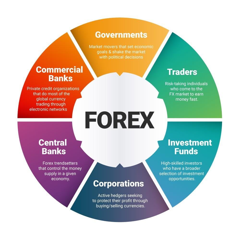 grade de forex e sistema de negociação v3.3 aulas on-line de negociação forex